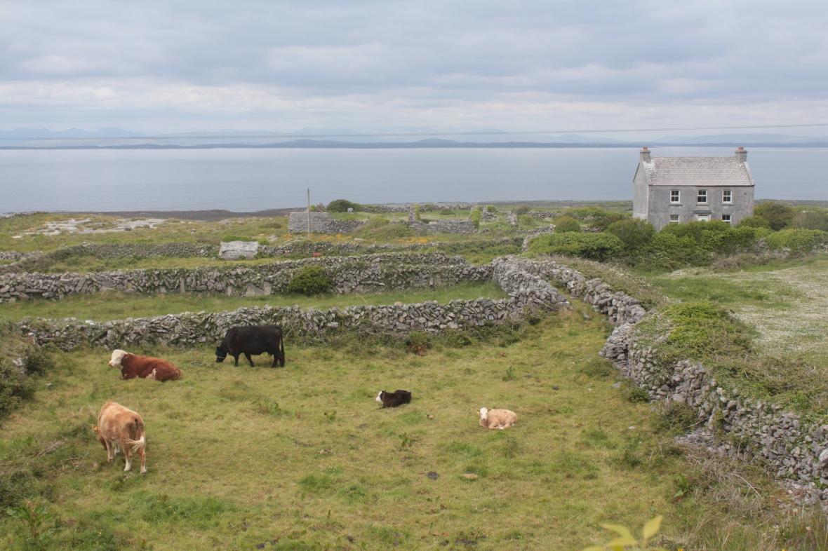 Aran Islands, Inishmore, travel, photography, landscape photography, Ireland