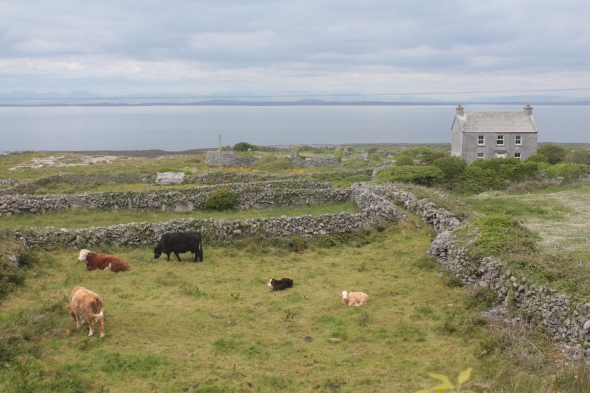 Aran Islands, Inishmore, travel, photography, landscape photography, Ireland