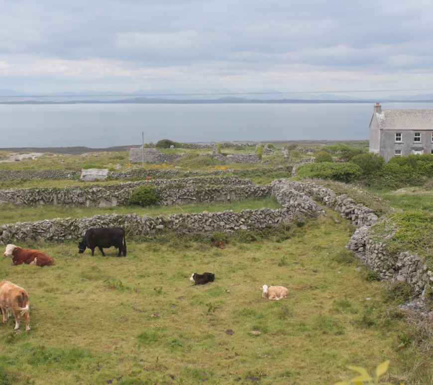 Irish Landscapes, Aran Islands, Inishmore, Aran Islands Inishmore